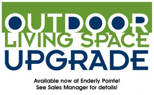 Outdoor Living Space Upgrade at Enderly Pointe!