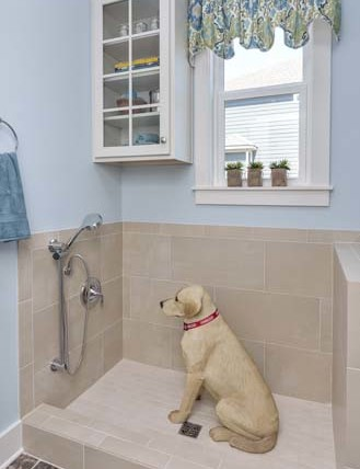 The Rockwell - Doggie shower